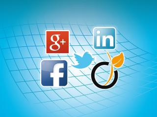 Utilisez les Réseaux Sociaux : Viadeo, Facebook, Twitter, Google+, LinkedIn